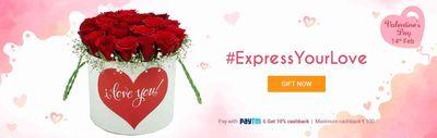 Fernsnpetals  Offer  15% off on Valentine's Day Gifts